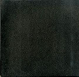 FR VSM FALP190/191 トスカニーニ ベートーヴェン・…